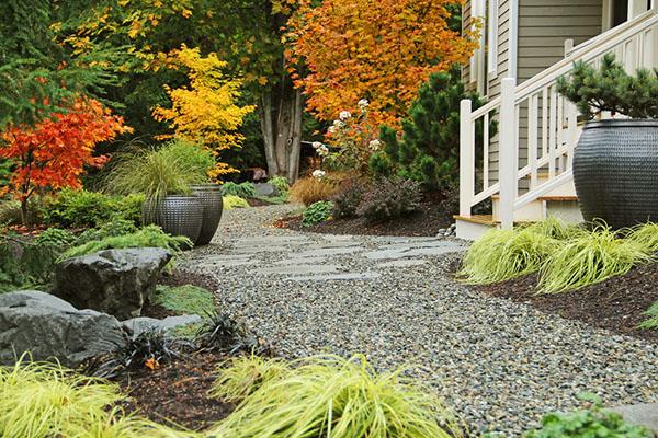 Дизайн садового участка - Водоем