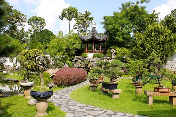 Ландшафтный дизайн - китайский стиль - Растения в камнях