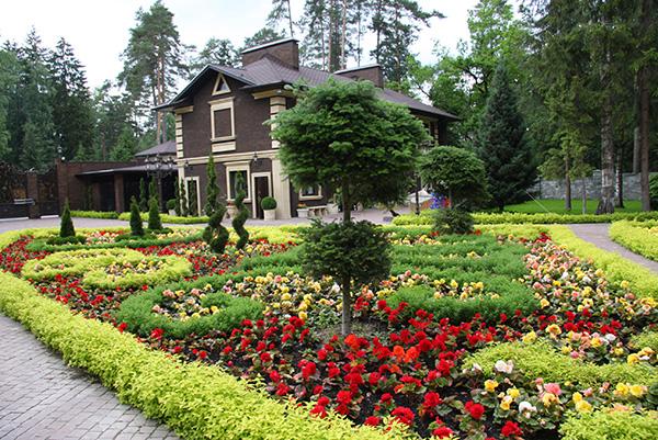 Ландшафтный дизайн приусадебного участка - Цветы и растения