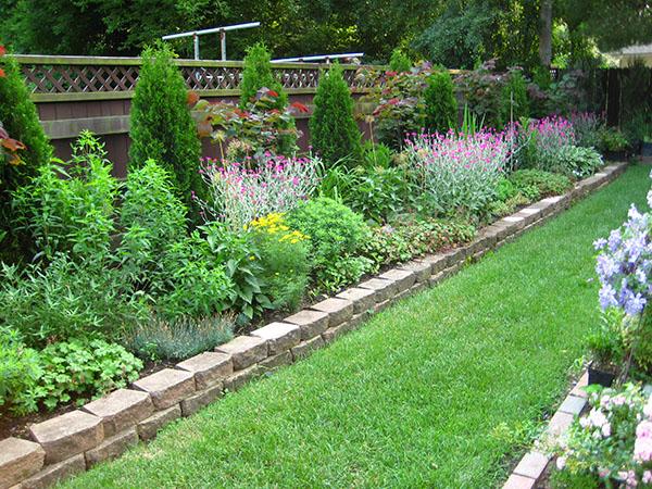 Ландшафт садового участка - Пруд с камнями