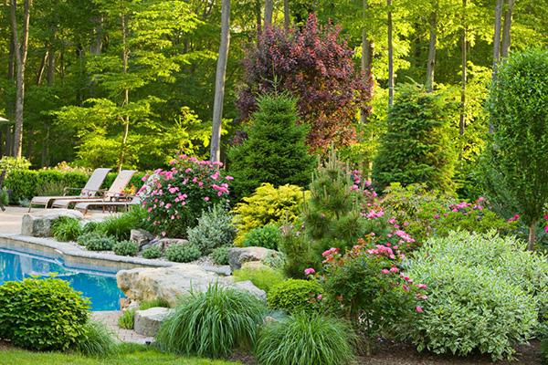 Пейзажный стиль - Зеленый сад