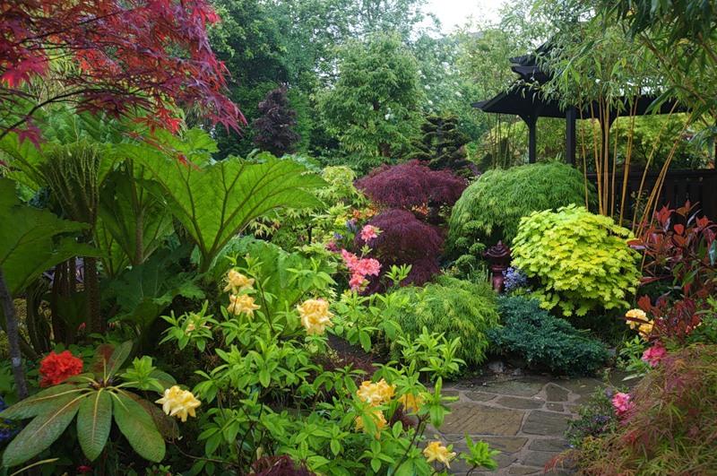 Подбор растений для сада - Клумба